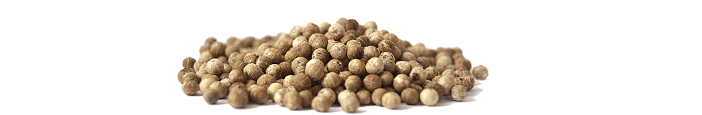 Great South Asia White Pepper Exporter Association